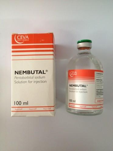 Buy Nembutal online Pentobarbital Sodium Liquid for sale Buy nembutal sodium liquid USA Where to order nembutal sodium for sale